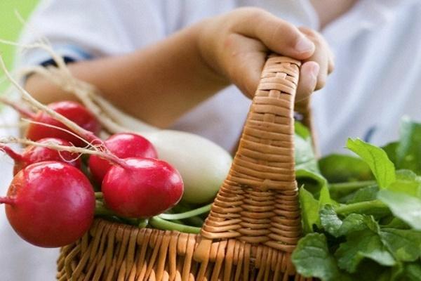 Що потрібно знати тернополянам про нітрати в овочах і фруктах